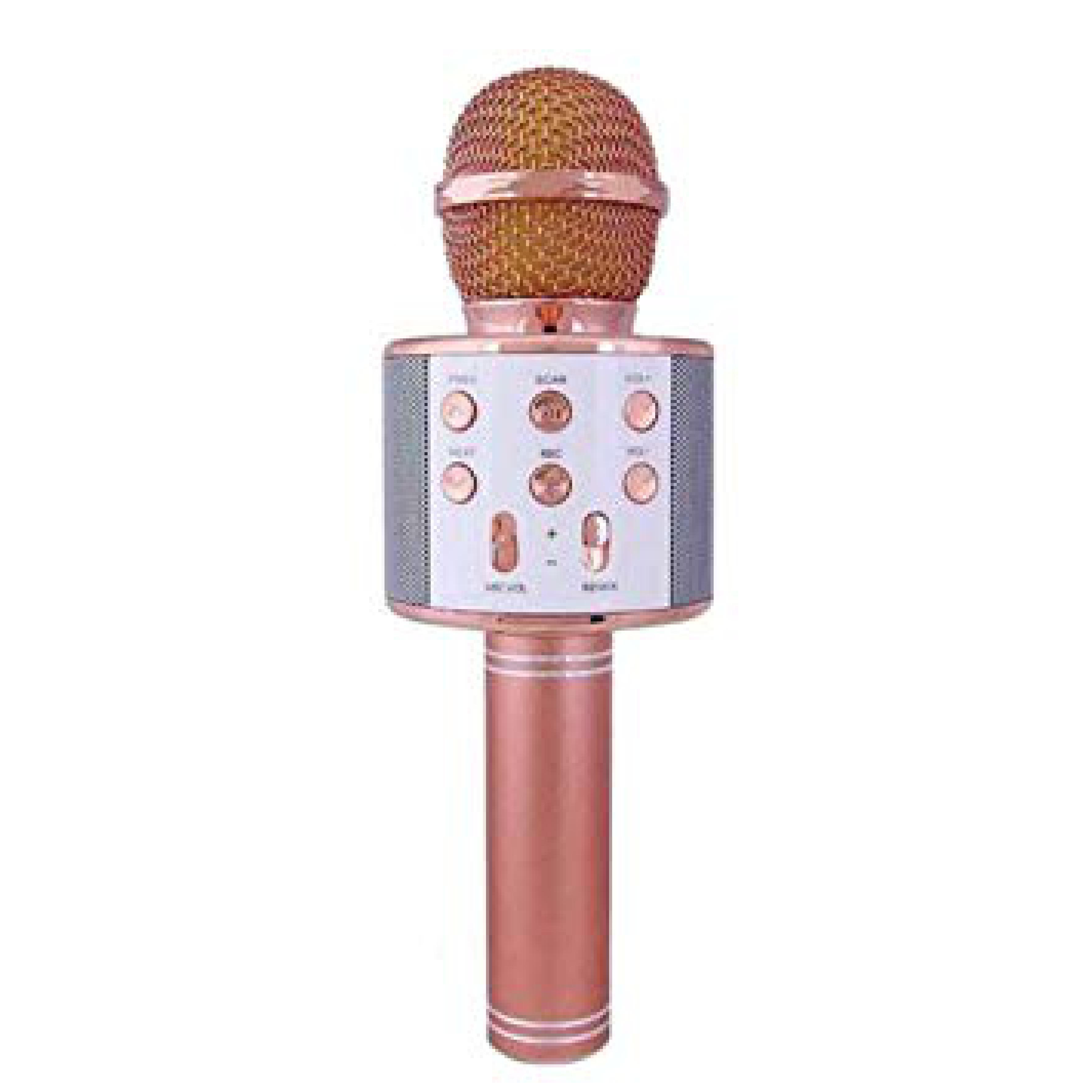 Bluetooth Karaoke Mikrofon Speaker Mp3 Çalar Kart Girişli WS 858