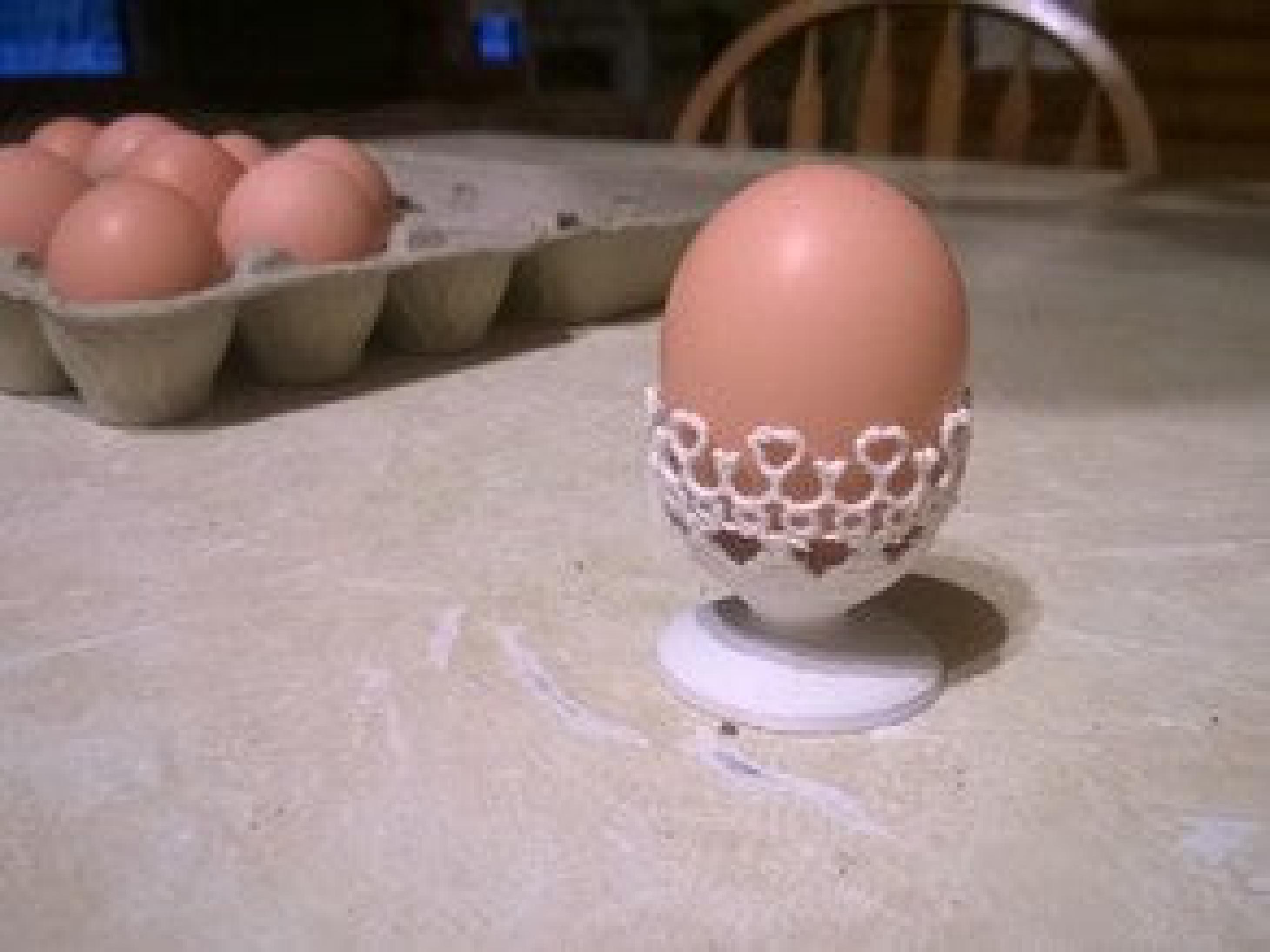 Yumurta kabı yeni gelin mutfağı